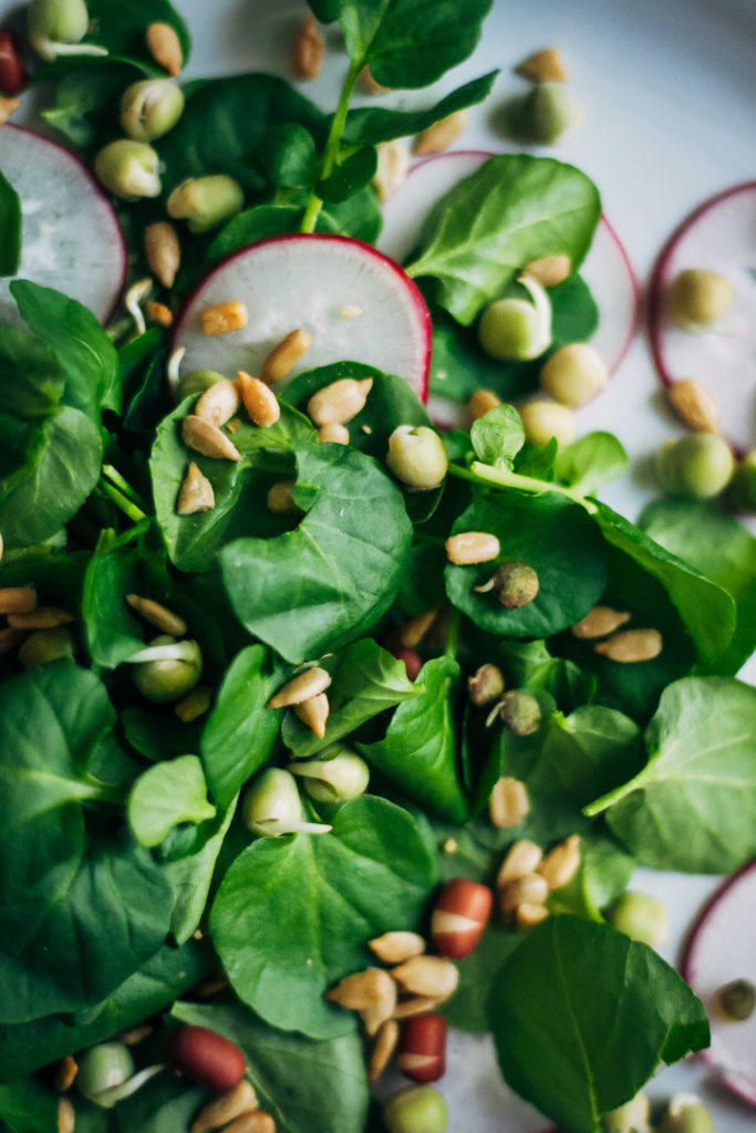 Spring Gratitude Salad | Well and Full | #vegan #recipe
