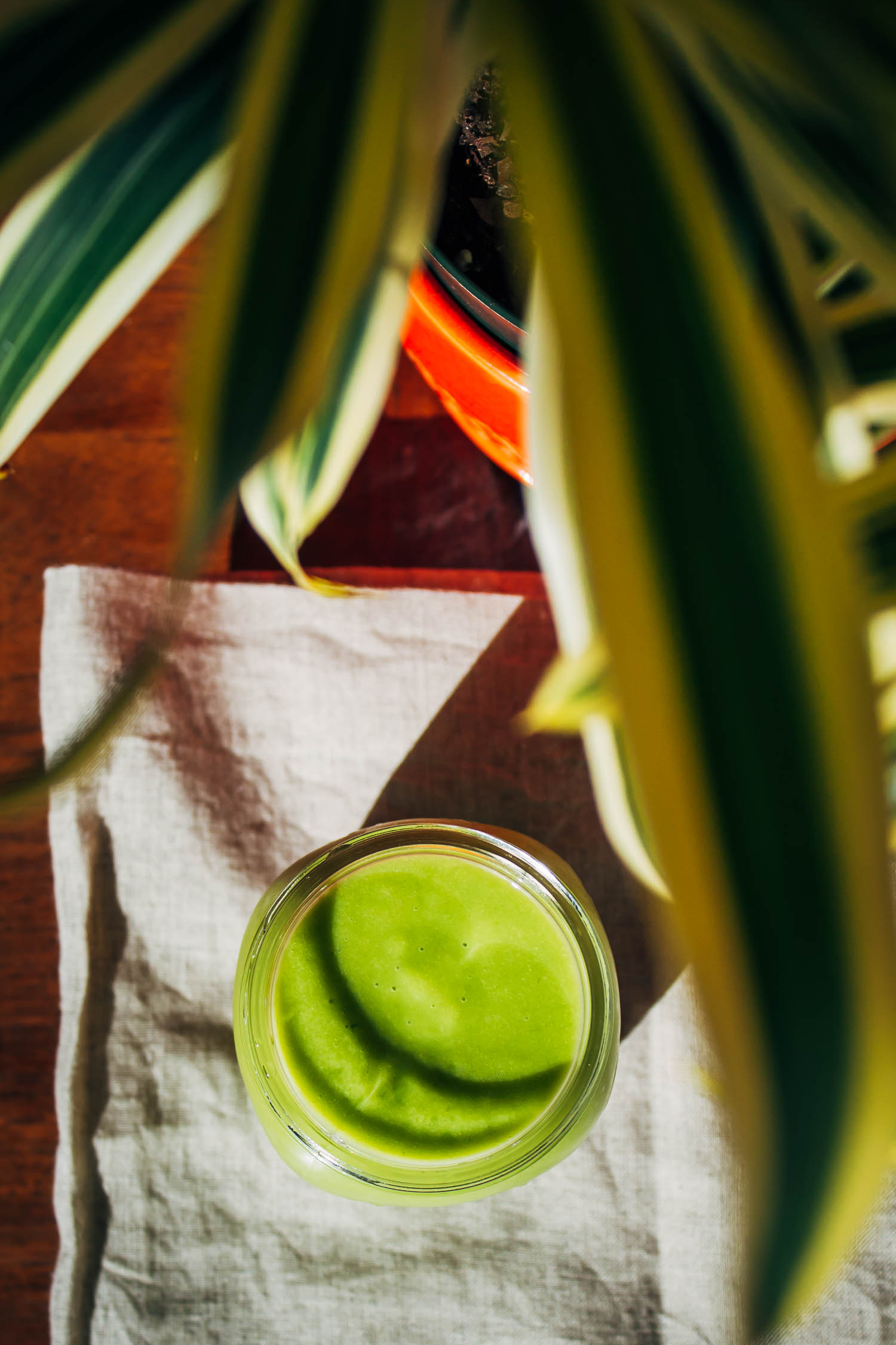 Stomach Soother Smoothie + Mental Health Mondays | Well and Full
